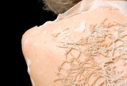 lace_2012